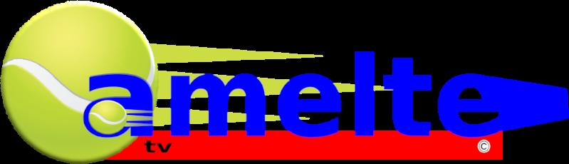 Tennisvereniging Amelte
